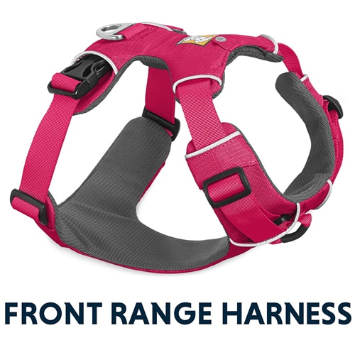 Best Dog Harnesses For Dachshunds
