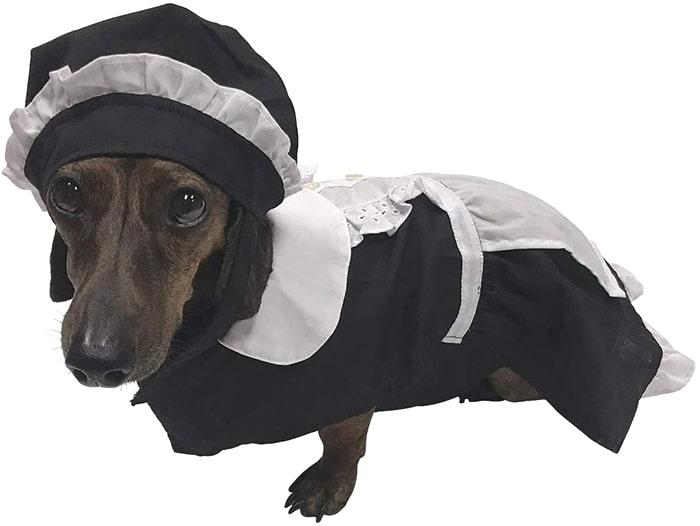Dachshund Halloween Costumes Maid