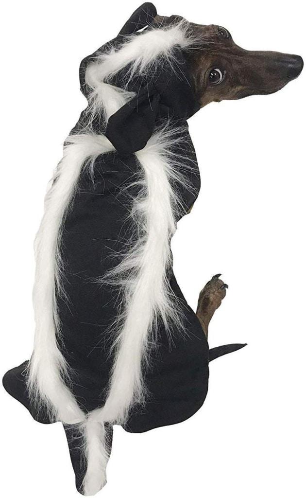 Dachshund Halloween Costumes skunk