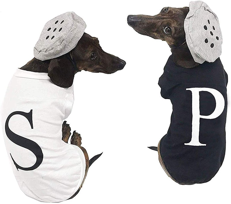 Dachshund Halloween Costumes salt and pepper