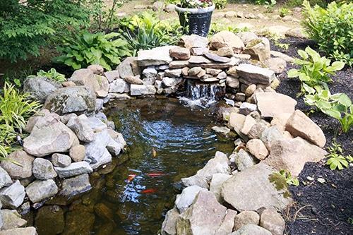 Cool Garden Ideas For Dachshund Lovers