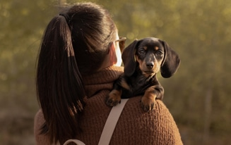 Best Dachshund Gift Ideas for Moms