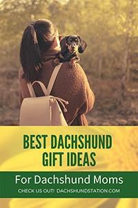 dachshund gifts women