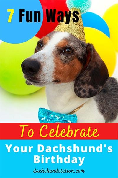 dachshund birthday party