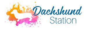 Dachshund Station Logo